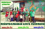 Пейнтбольный парк Скорпион (Загородный комплекс за ГРЭСом)